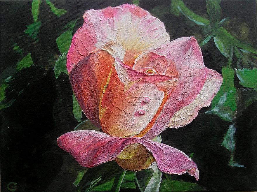 Papa´s Rose