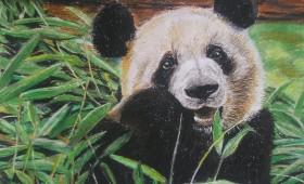 Krafttier Pandabär
